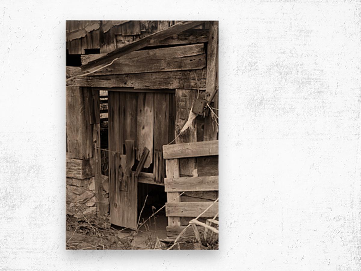 Hints Of Modern ap 1893 B&W Wood print