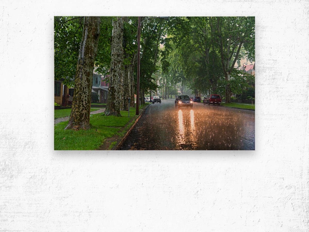 Summer Rain ap 2892 Wood print