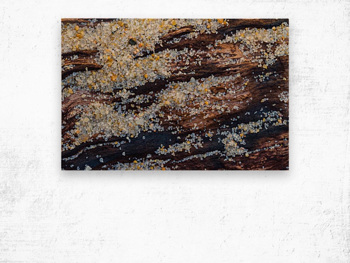 Sand ap 1851 Wood print