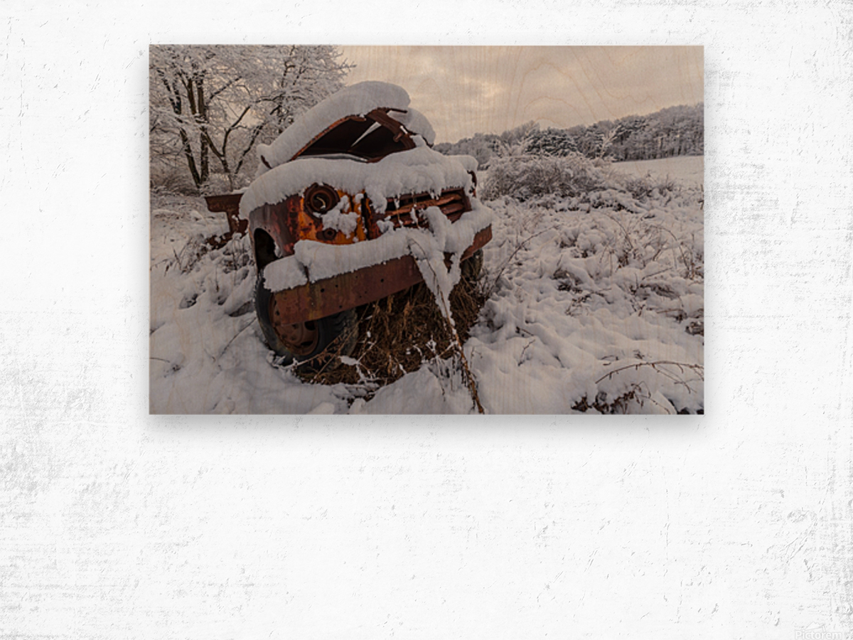 Forgotten ap 2857 Wood print