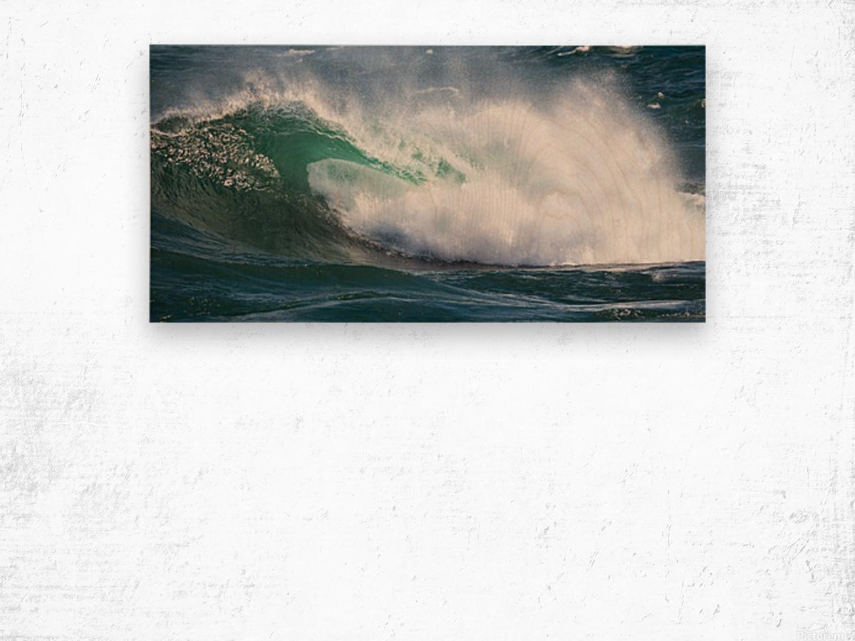 Wave Curl ap 2668 Wood print