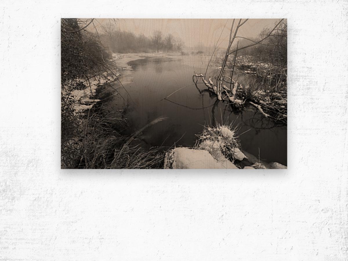 Snow Storm ap 2706 Wood print