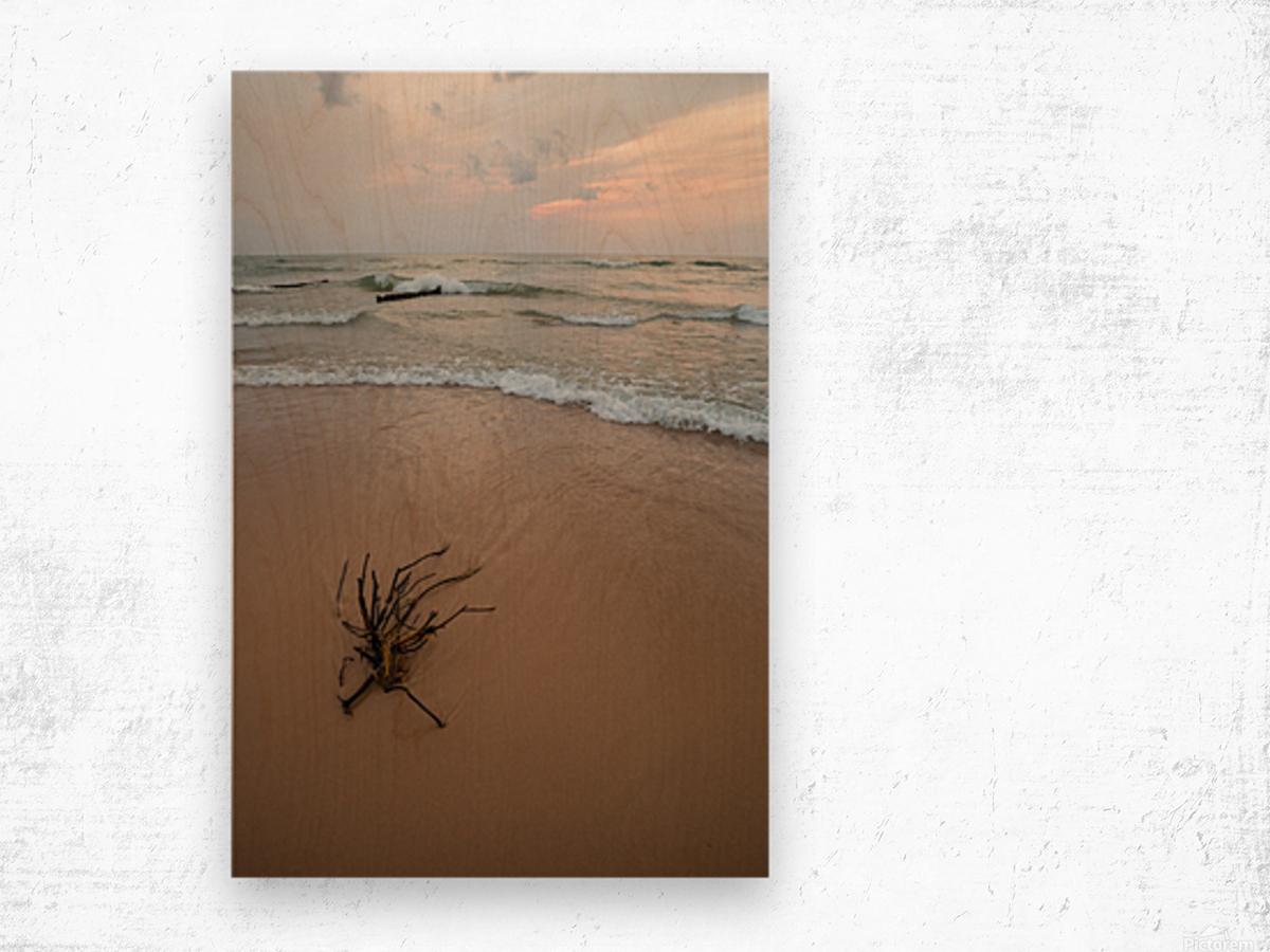 Lake Michigan ap 2415 Wood print
