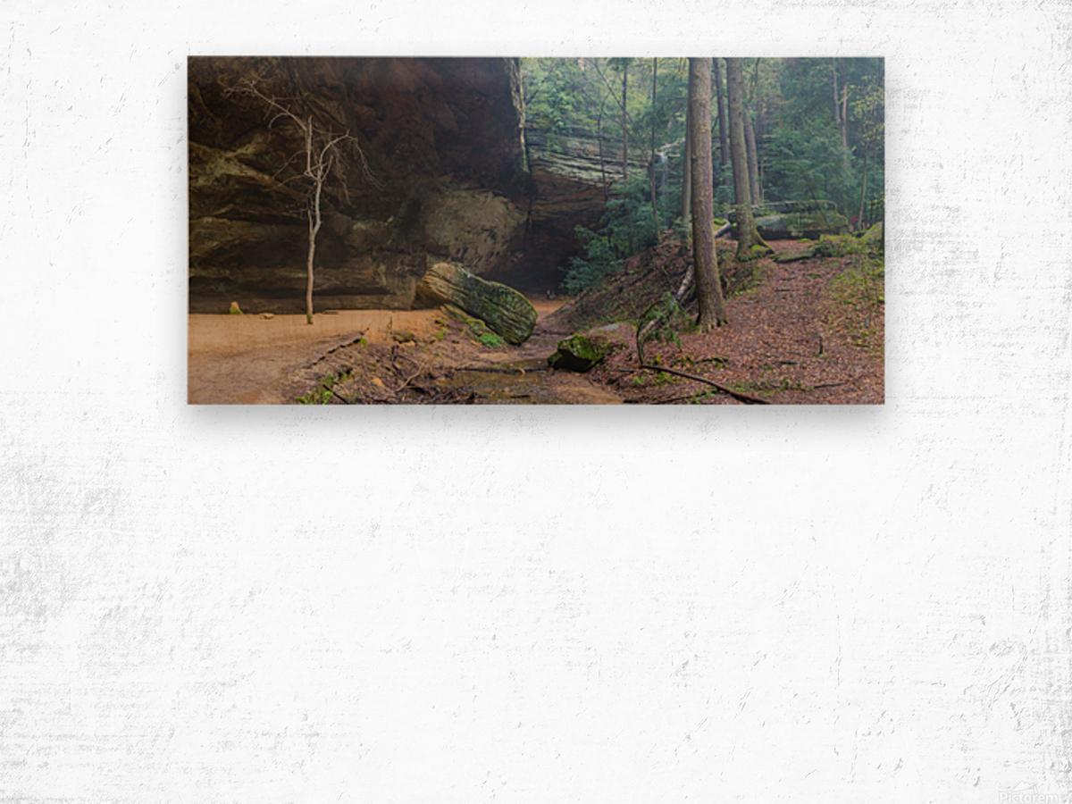 Ash Cave Entrance apmi 1641 Wood print