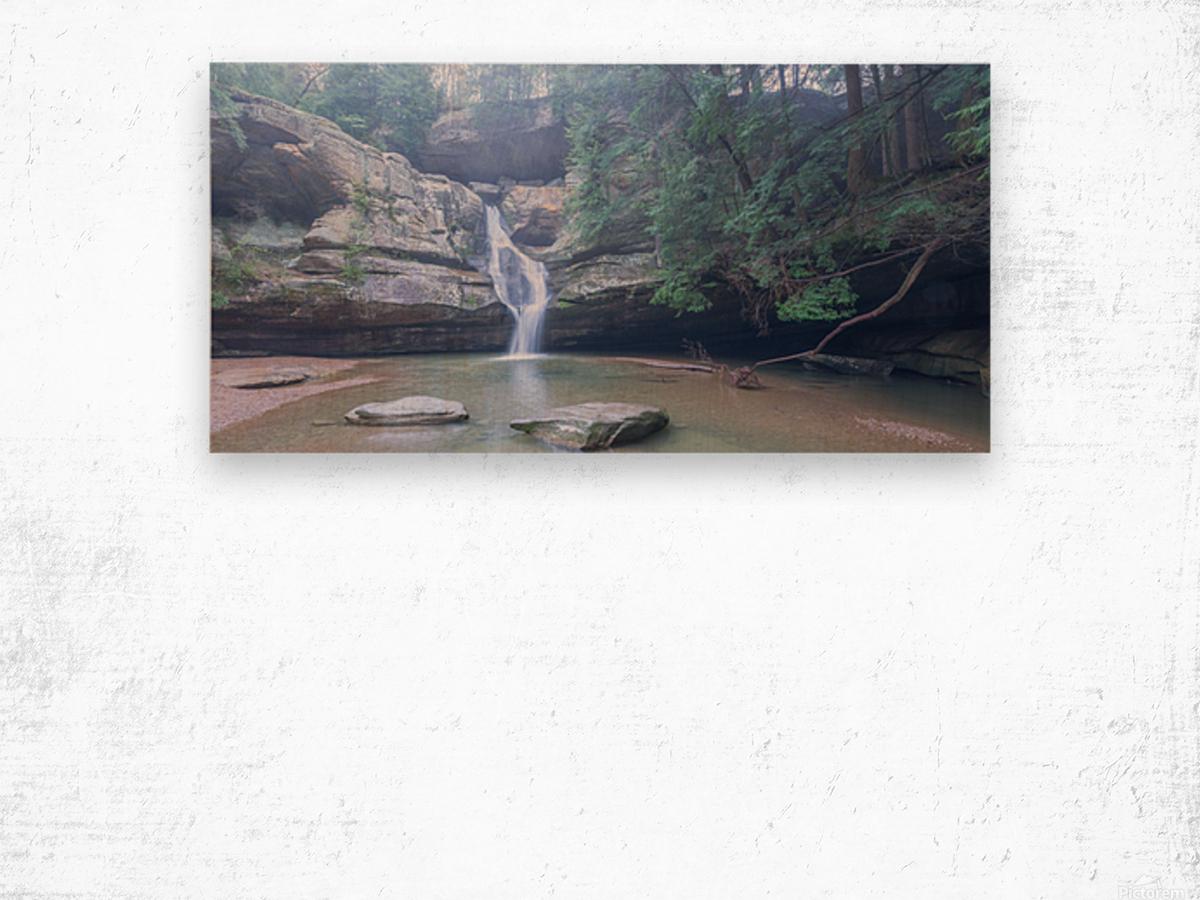 Cedar Falls apmi 1633 Wood print