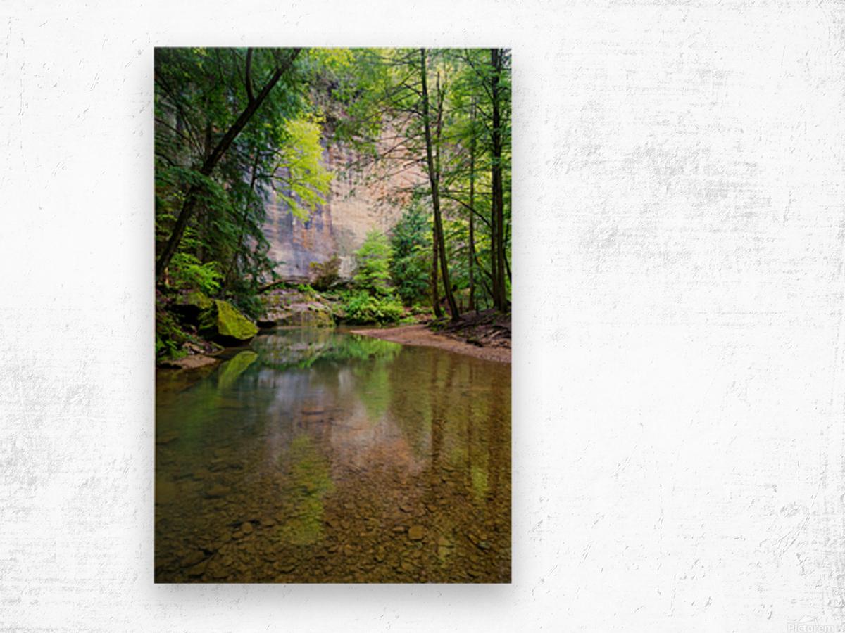 Queer Creek ap 2060 Wood print