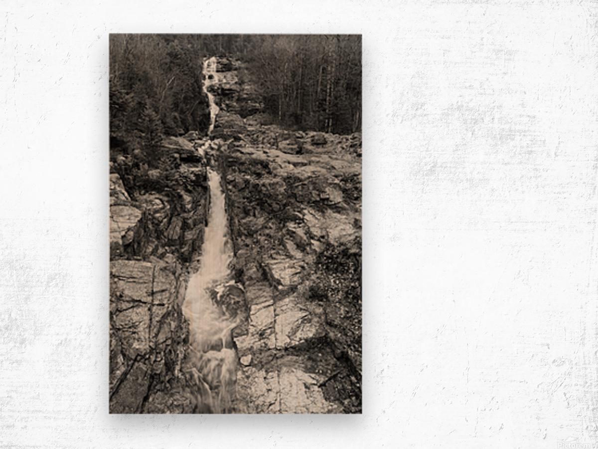 Silver Cascade Falls ap 2226 B&W Wood print