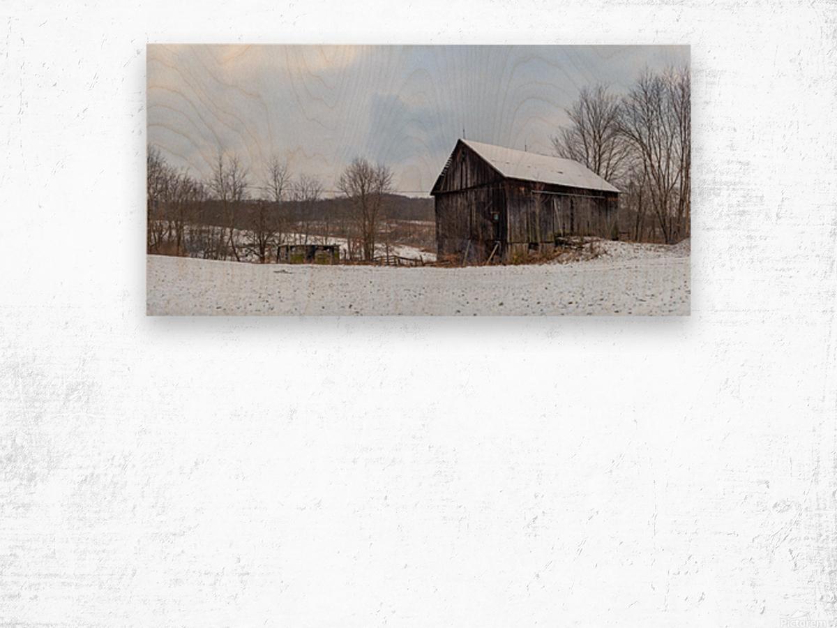 Classic Barn apmi 1528 Wood print