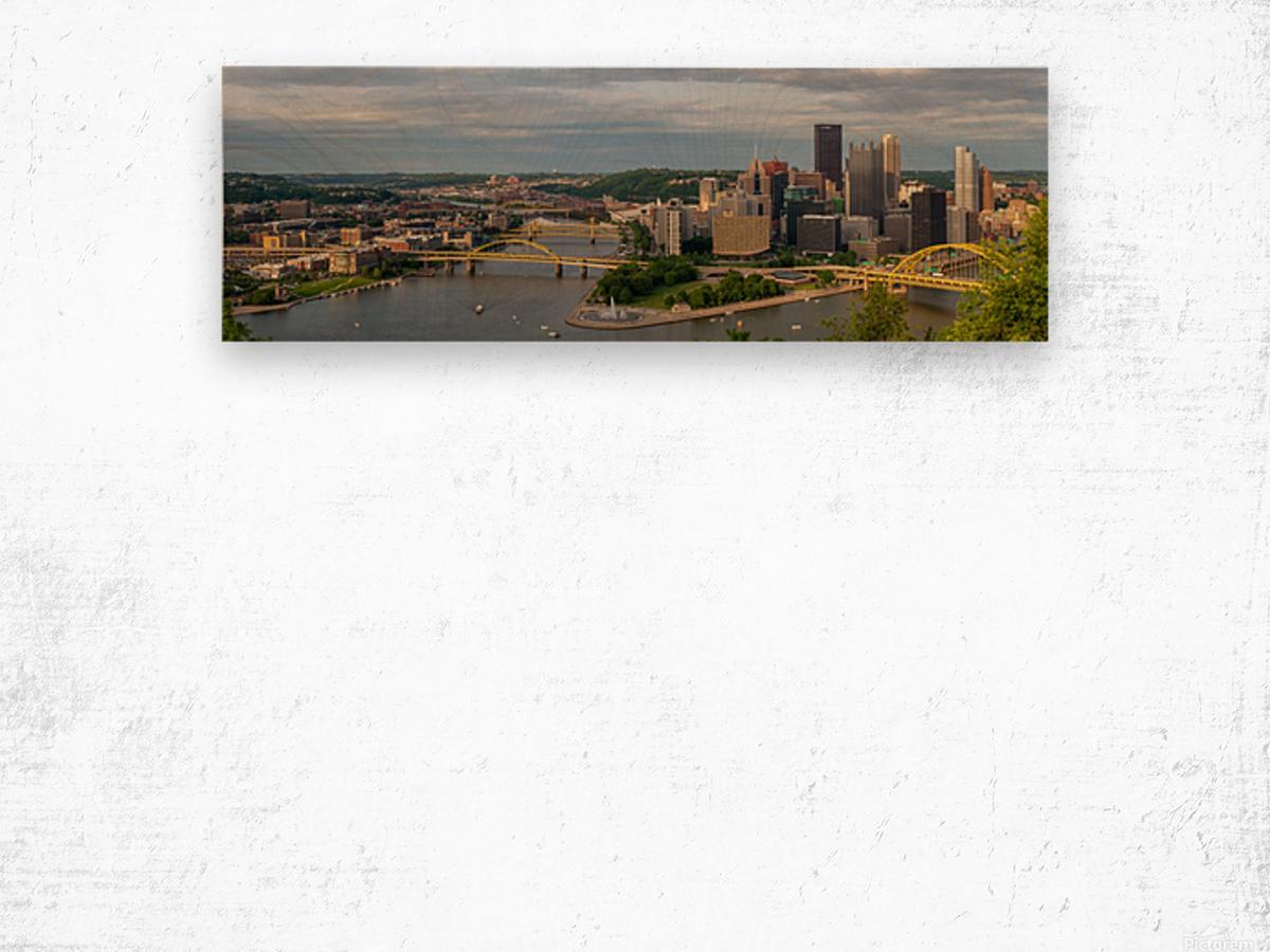Pittsburgh apmi 1698 Wood print