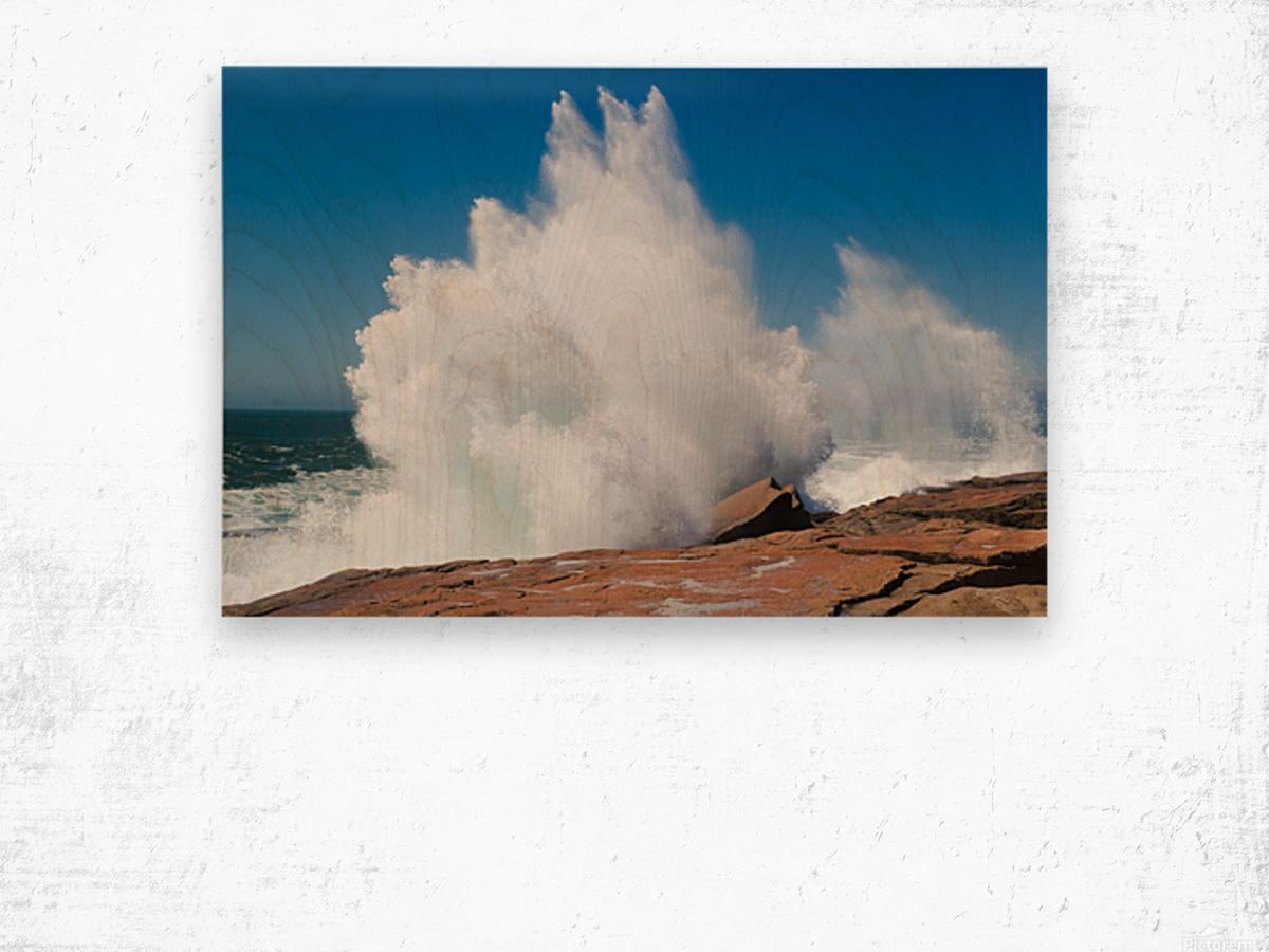 Crashing Wave ap 2320 Wood print