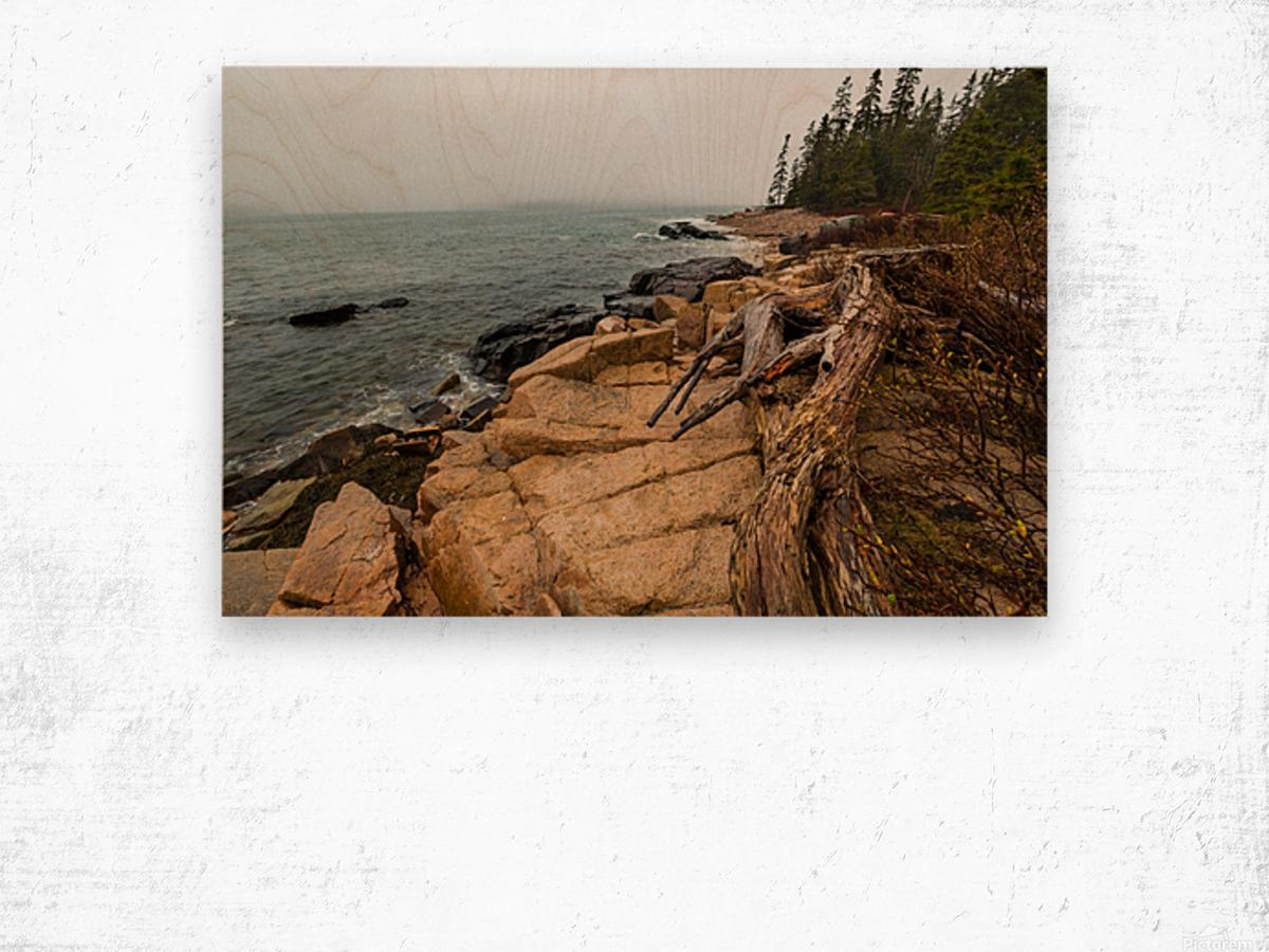 Driftwood ap 2257 Wood print
