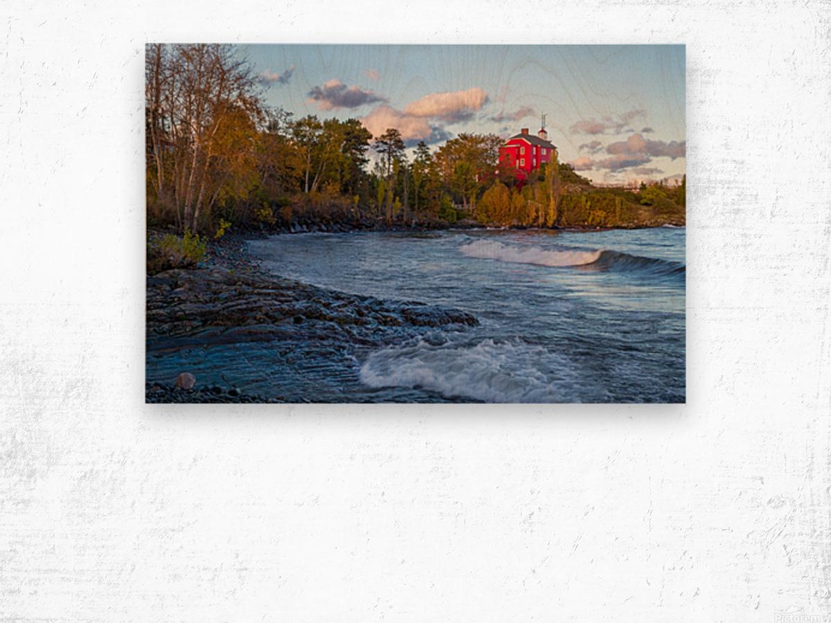 Big Red ap 2684 Wood print