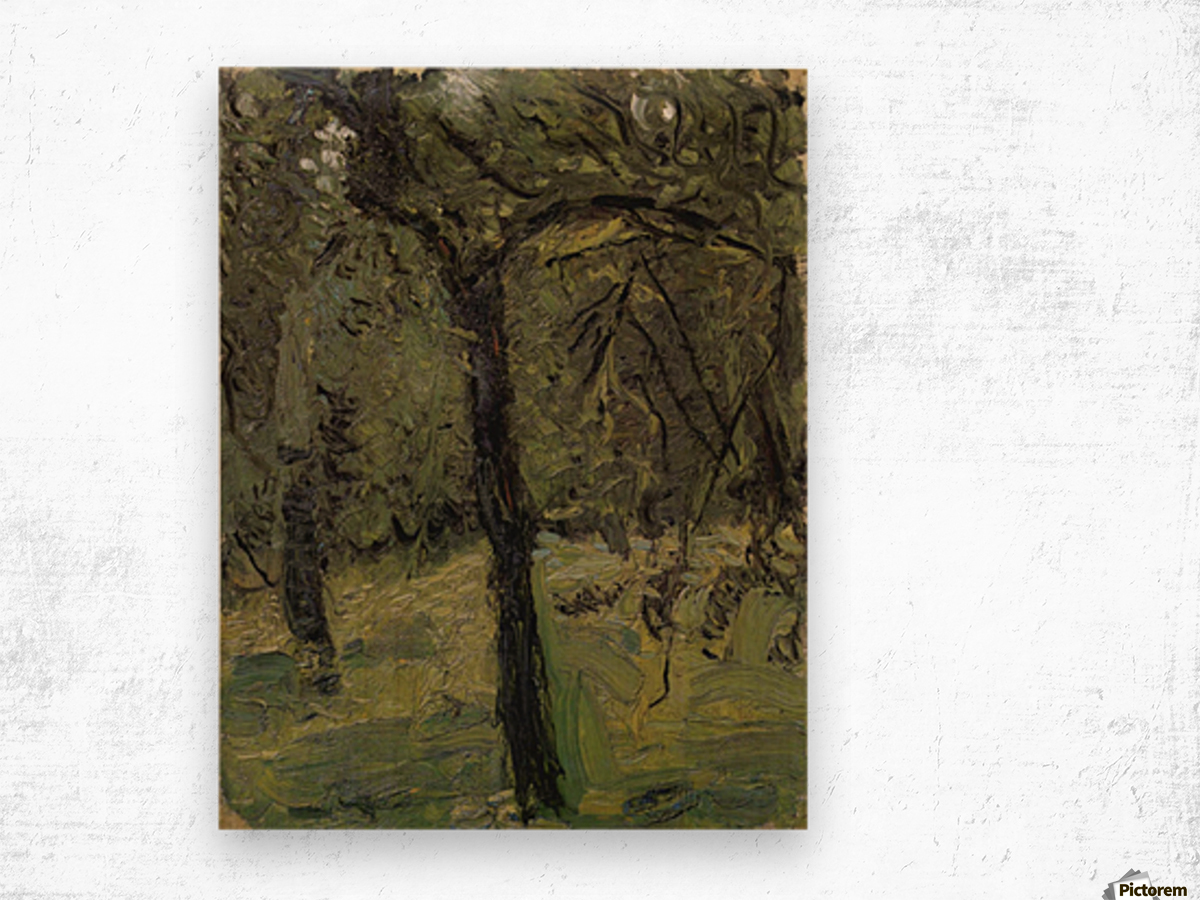 Sunny Meadow with fruit trees by Richard Gerstl Wood print