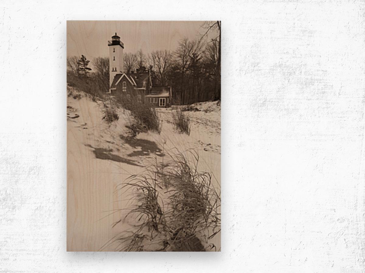 Lighthouse ap 2148 Wood print