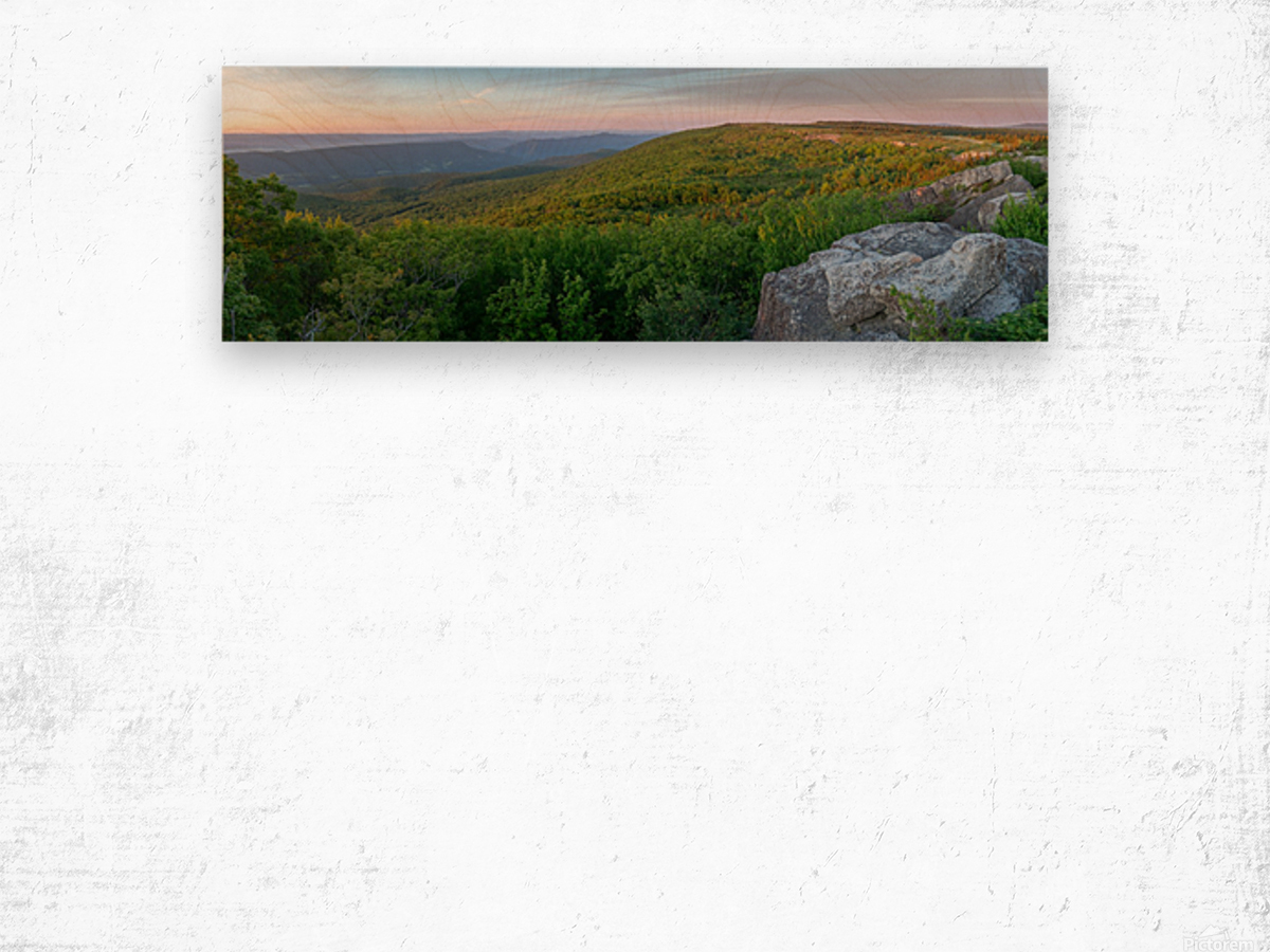 Dolly Sods at Sunrise apmi 1710 Wood print