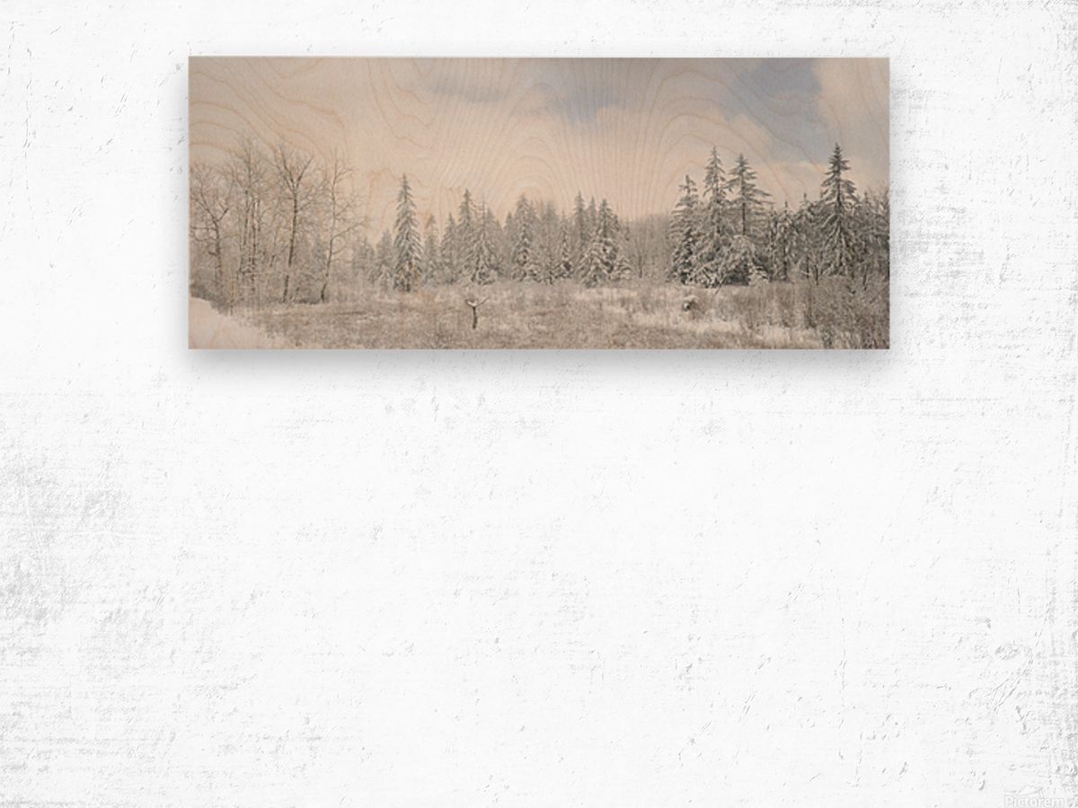 Treeline apmi 1588 Wood print