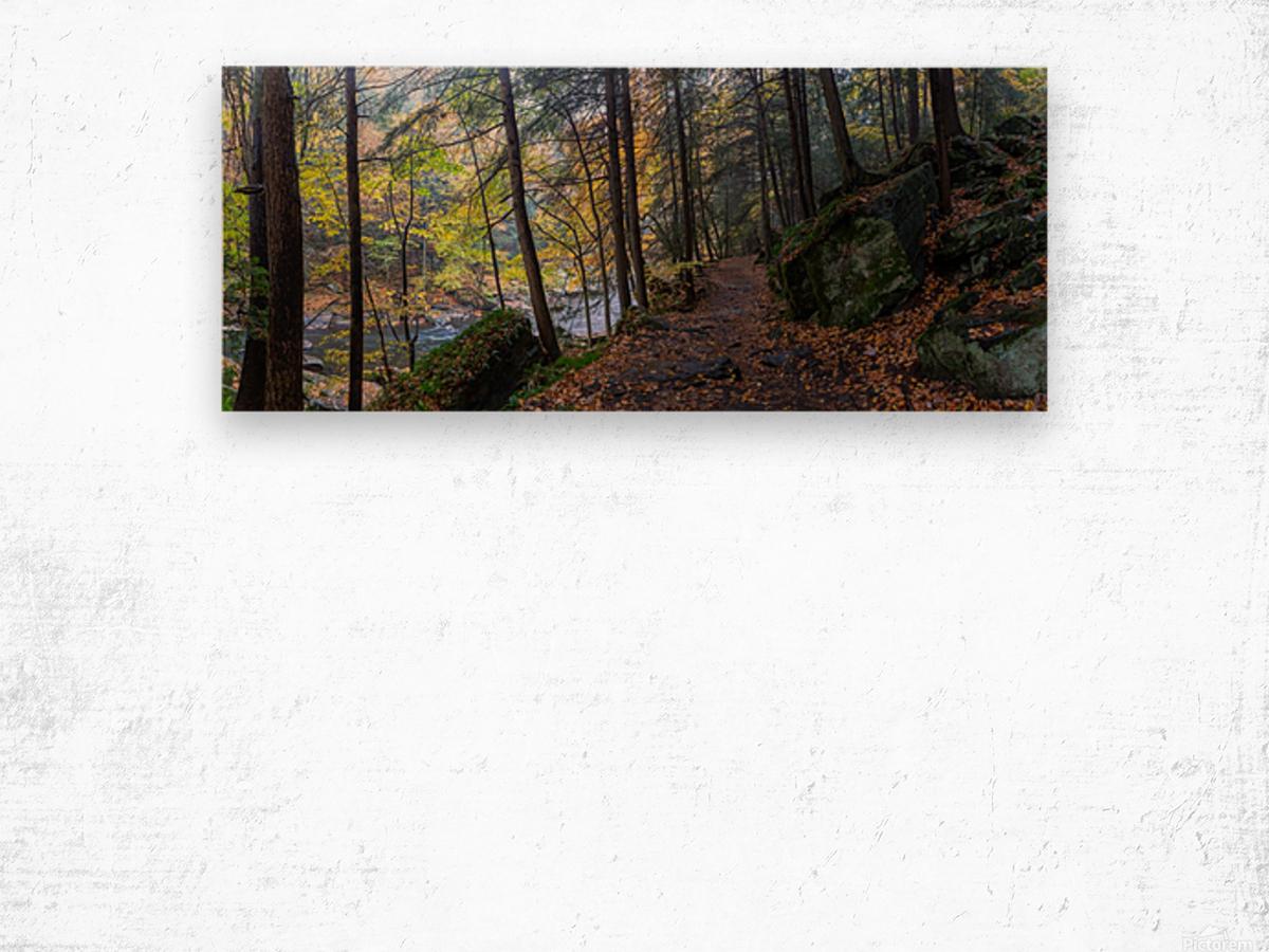 Alpha Pass Trail apmi 1927 Wood print