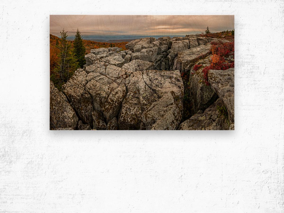 Bear Rocks Preserve apmi 1791 Wood print