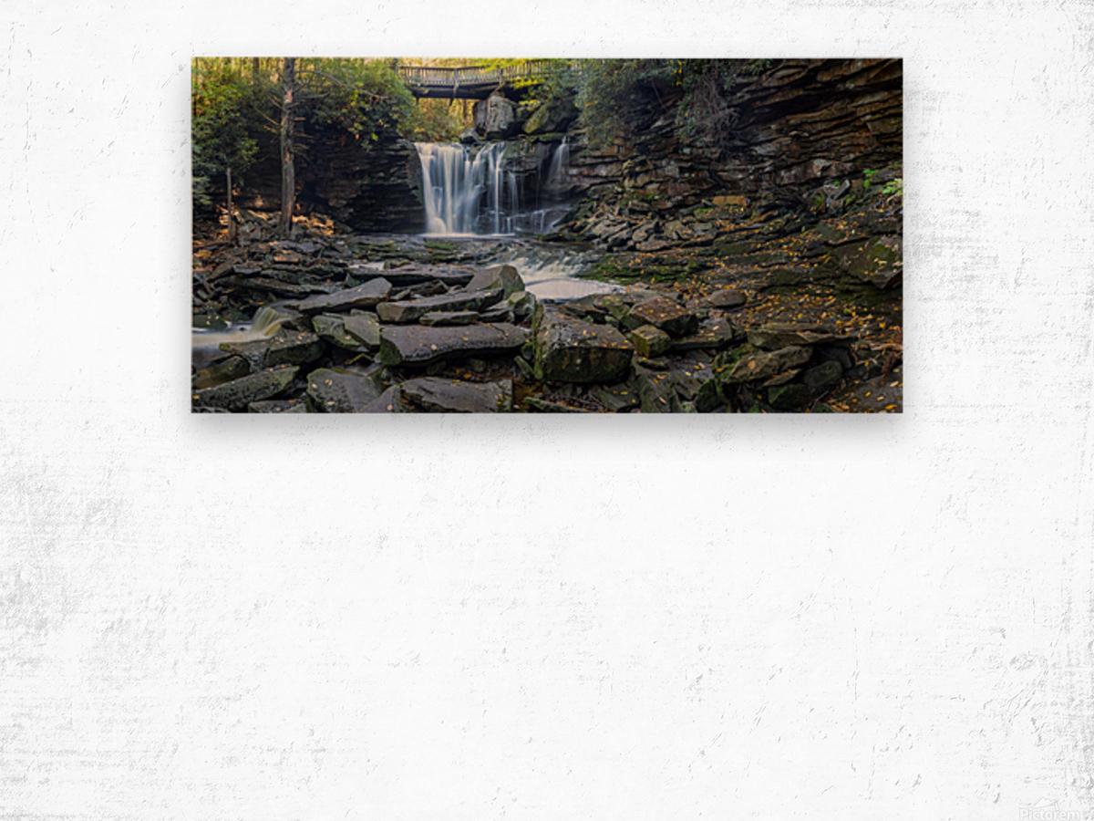 Elakala Falls and Bridge apmi 1775 Wood print