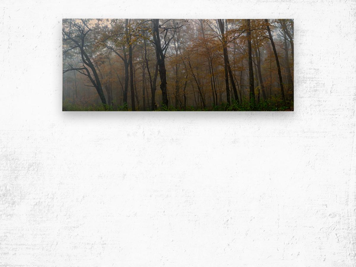 Treeline apmi 1867 Impression sur bois