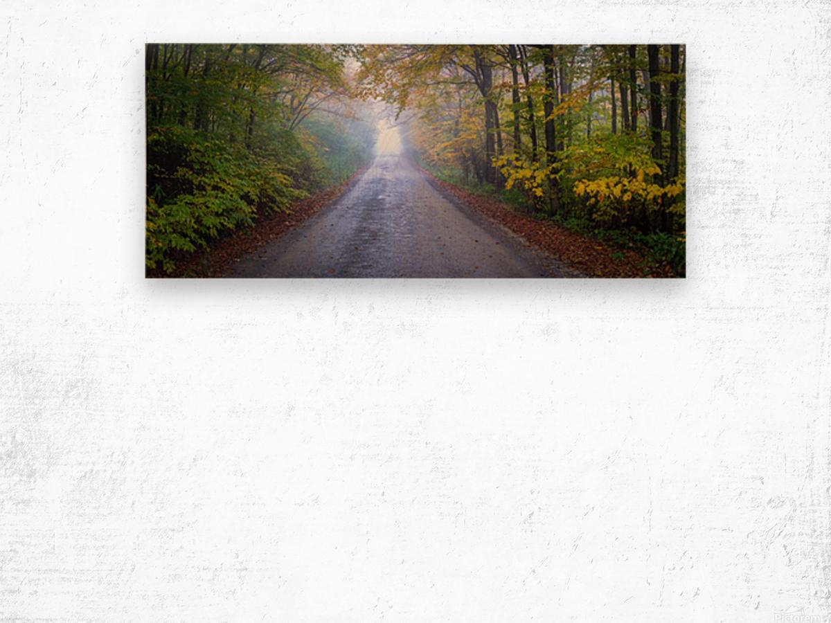 Route 75 apmi 1860 Wood print