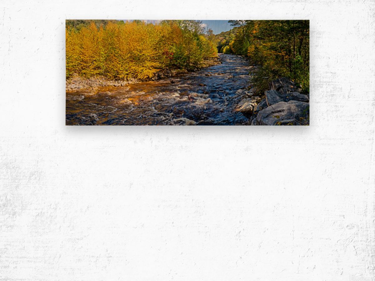 Red Creek Aspens apmi 1769 Wood print