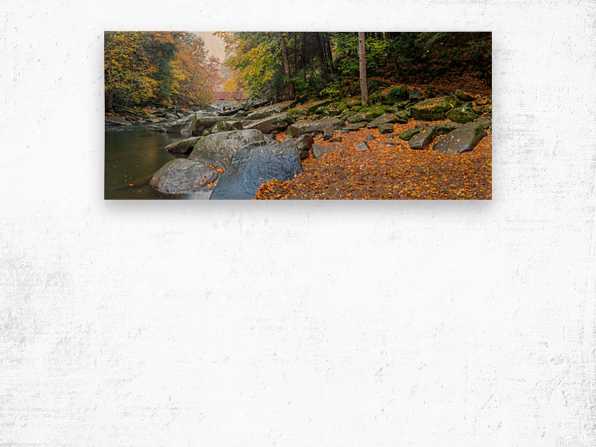 Slippery Rock Creek apmi 1959 Wood print