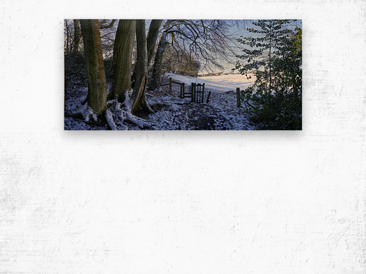 Woods in the Snow Wood print