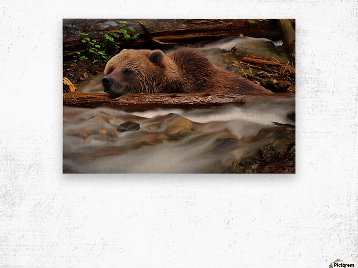 Never Give Up - Wilderness Art by Jordan Blackstone Wood print