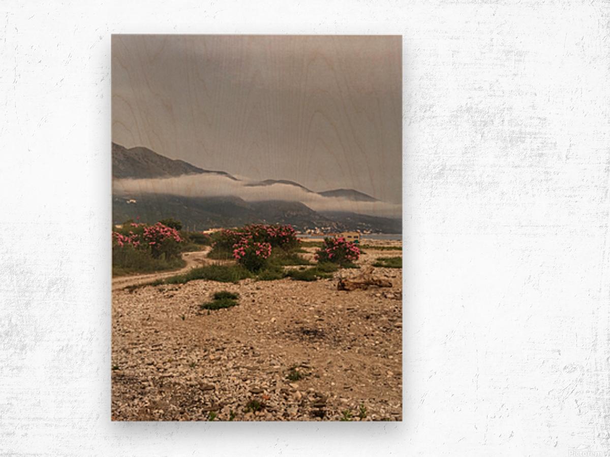 Albania Wood print
