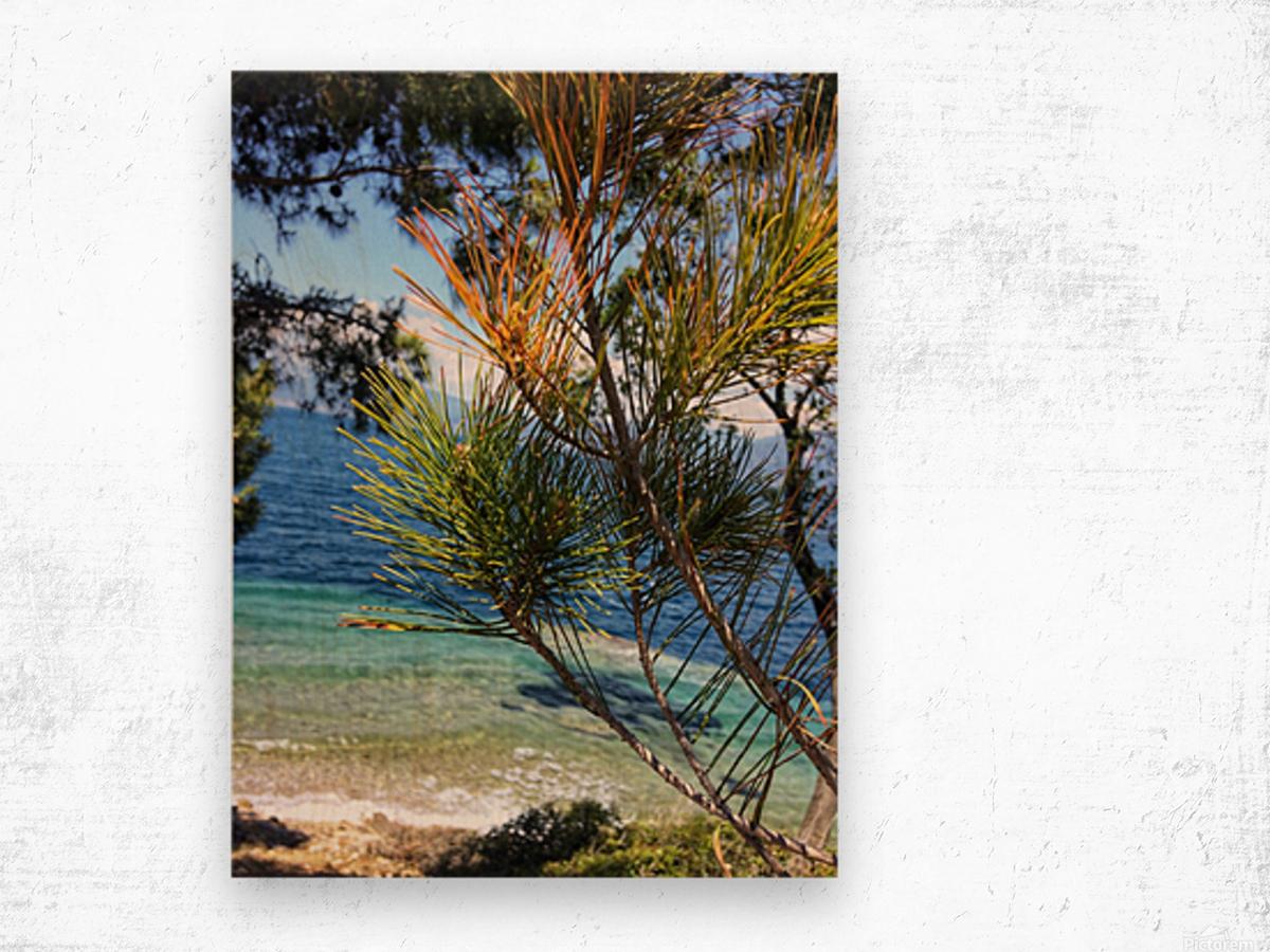 Greece Peloponnese Wood print