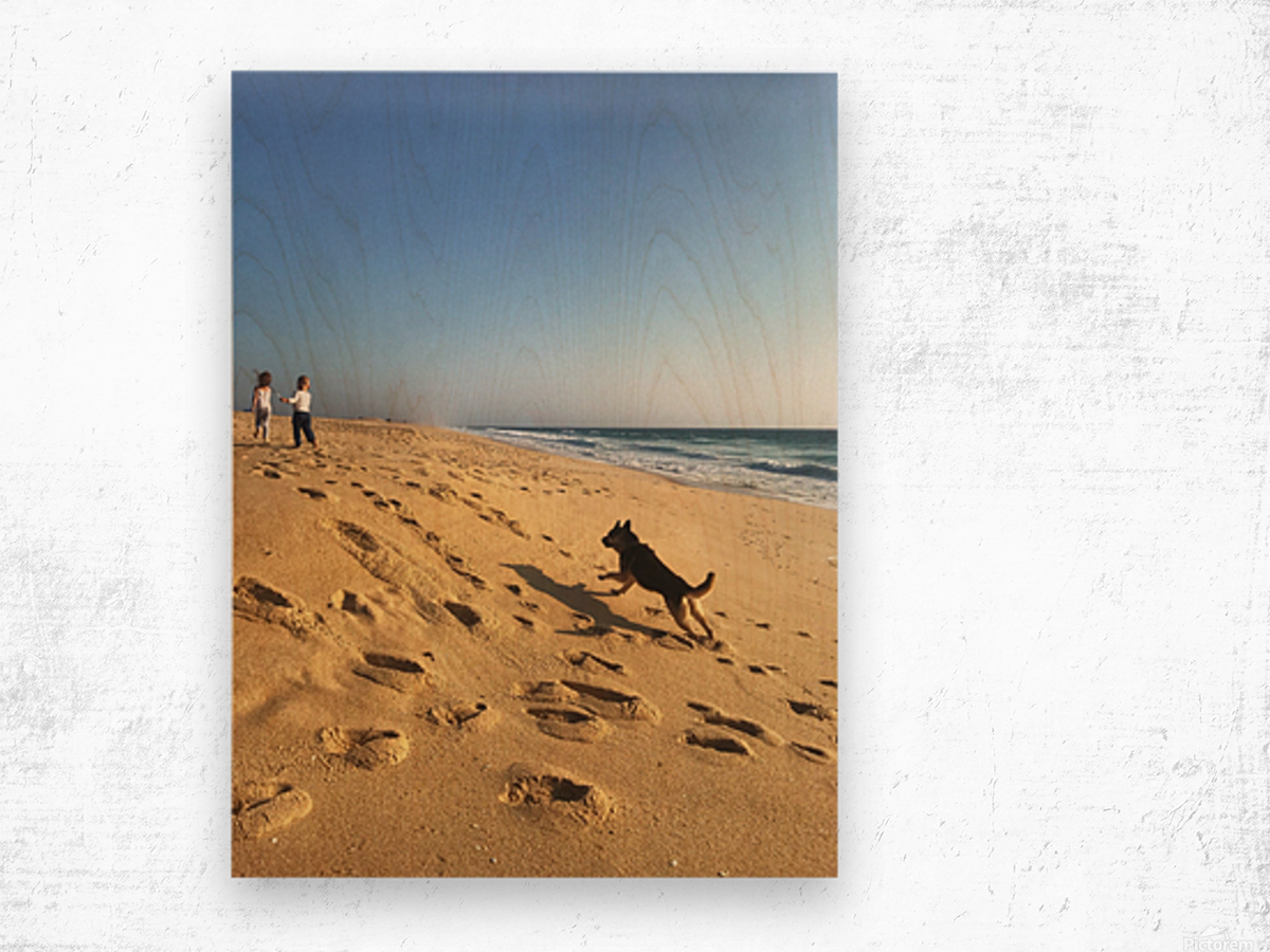 Dog and kids on the beach in Portugal Wood print