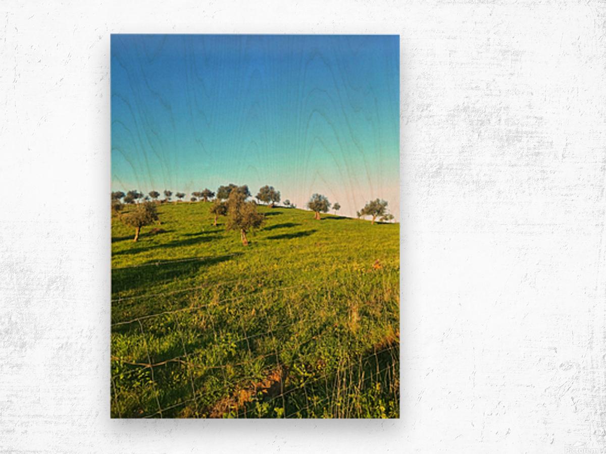Landscape of central Portuga Wood print