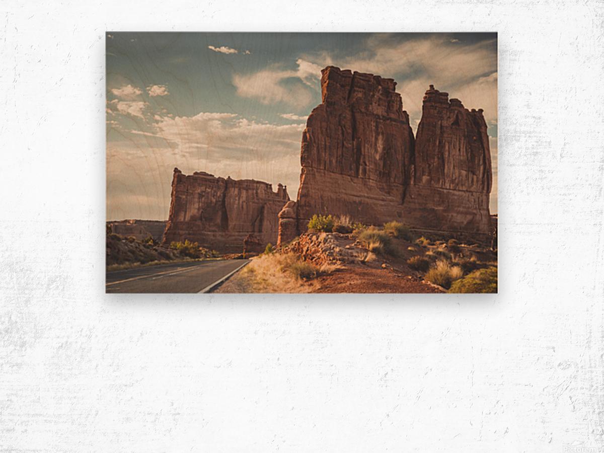 Arches National Park UT Wood print