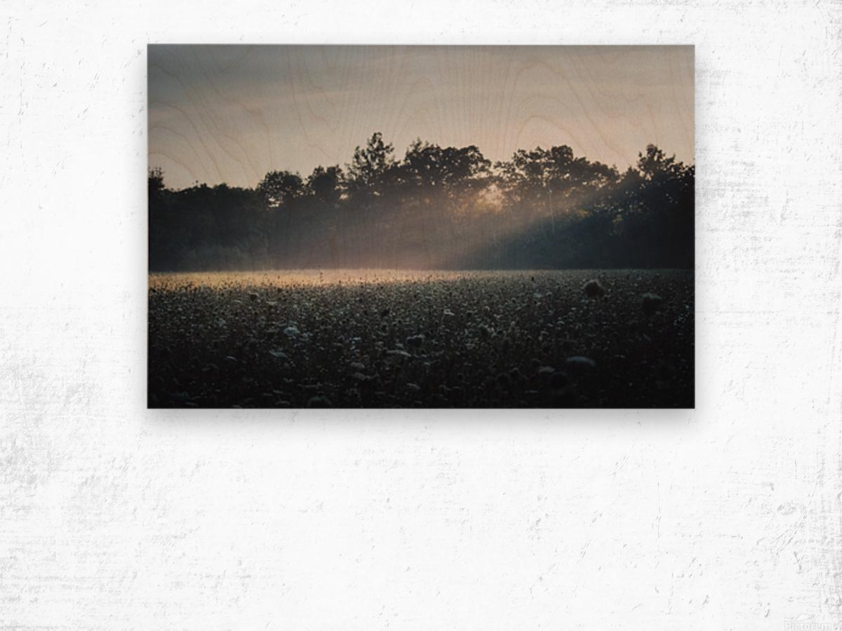 Pennsylvania Sunrise Wood print