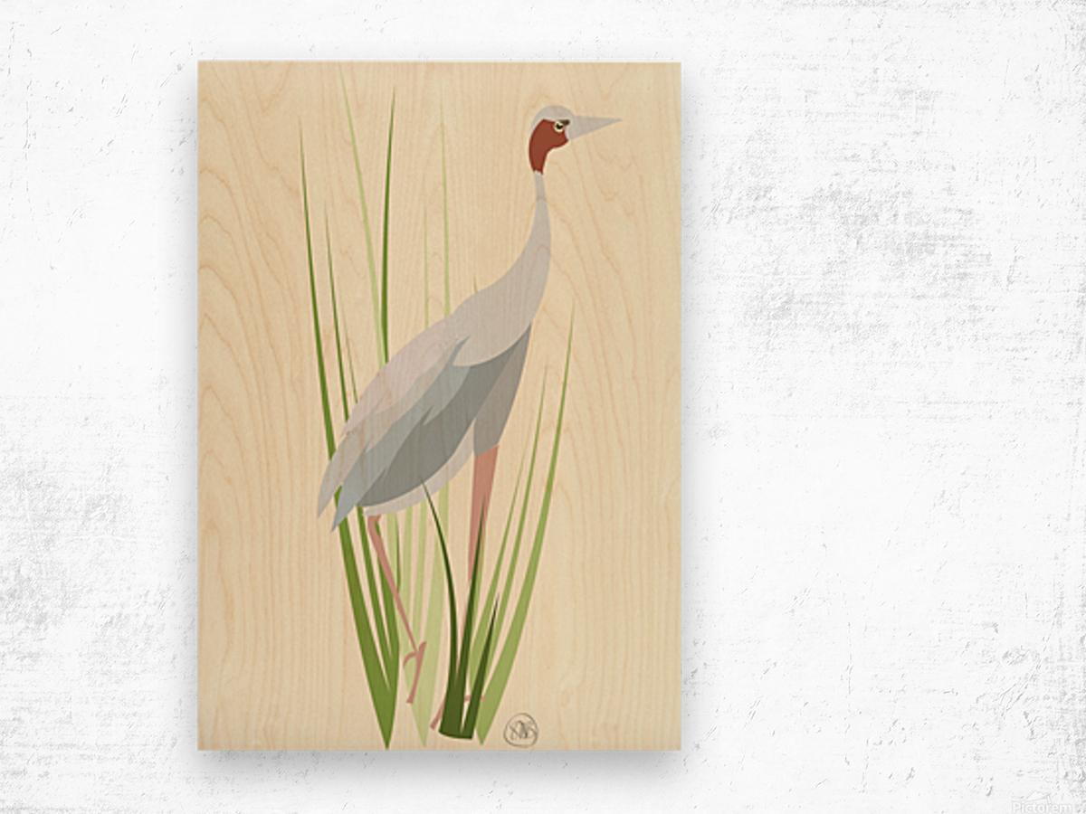 Sarus Crane Wood print