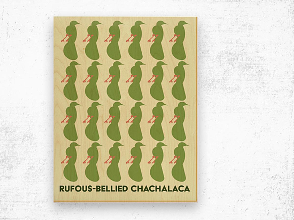 Rufus -Bellied ChaChalaca Wood print