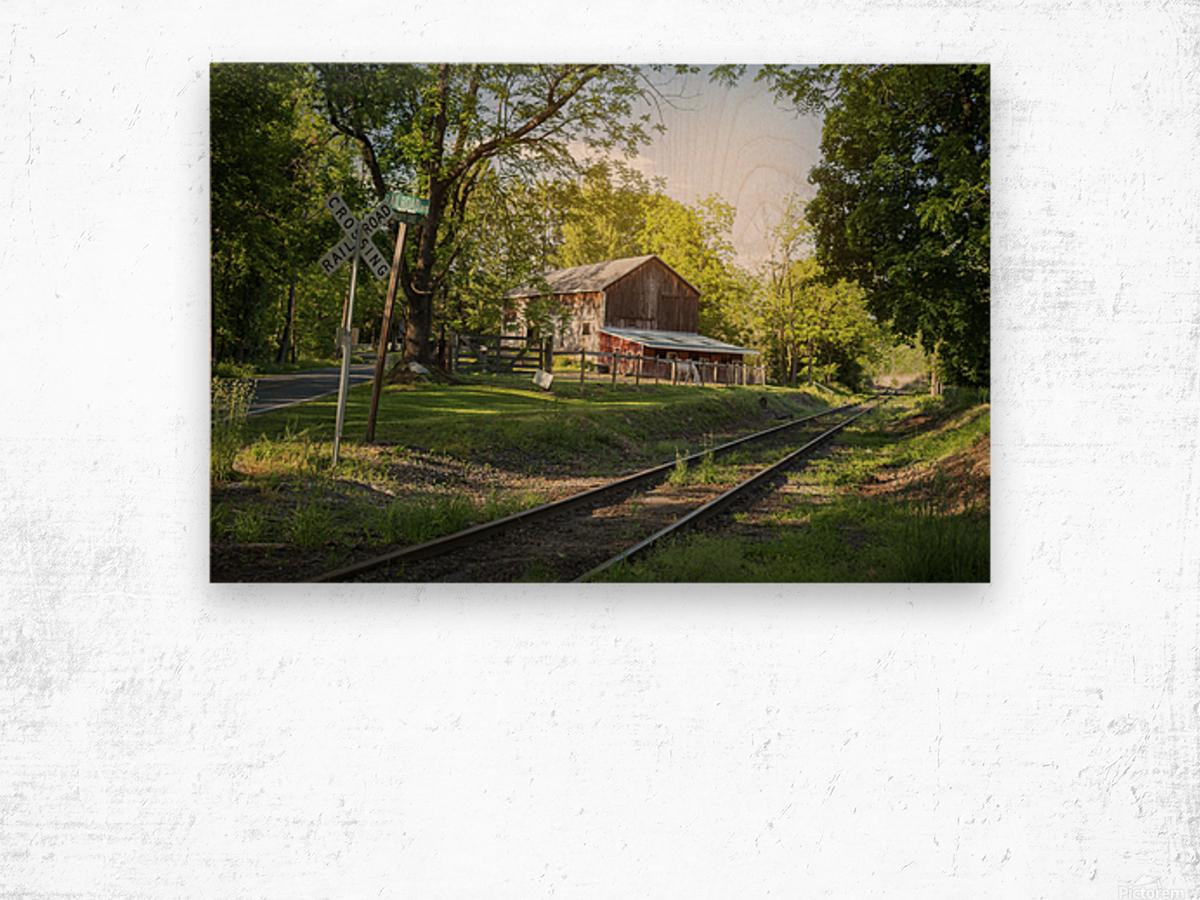 Country Life Wood print