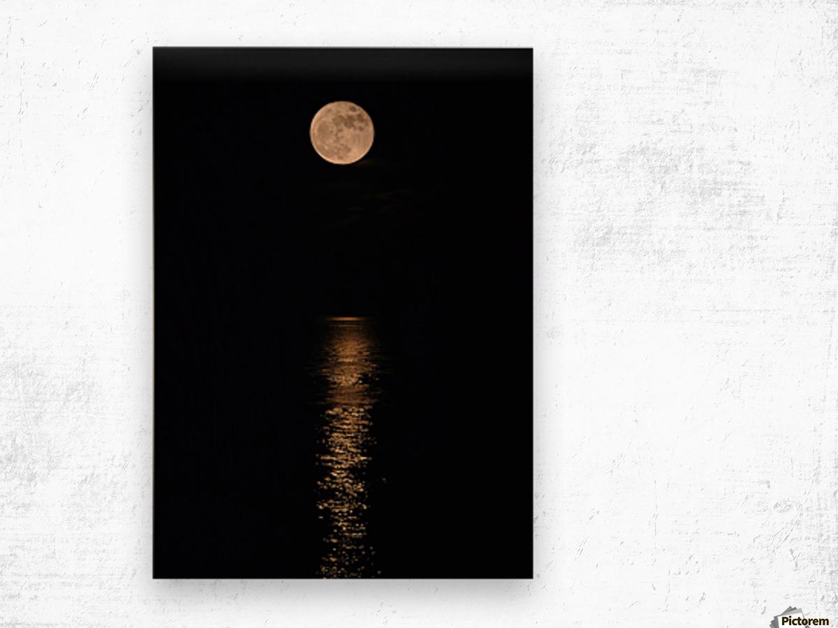 Holiday Magic - Lunar Art by Jordan Blackstone Wood print