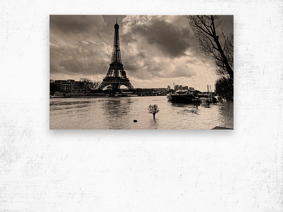 Eiffel tower flood Impression sur bois