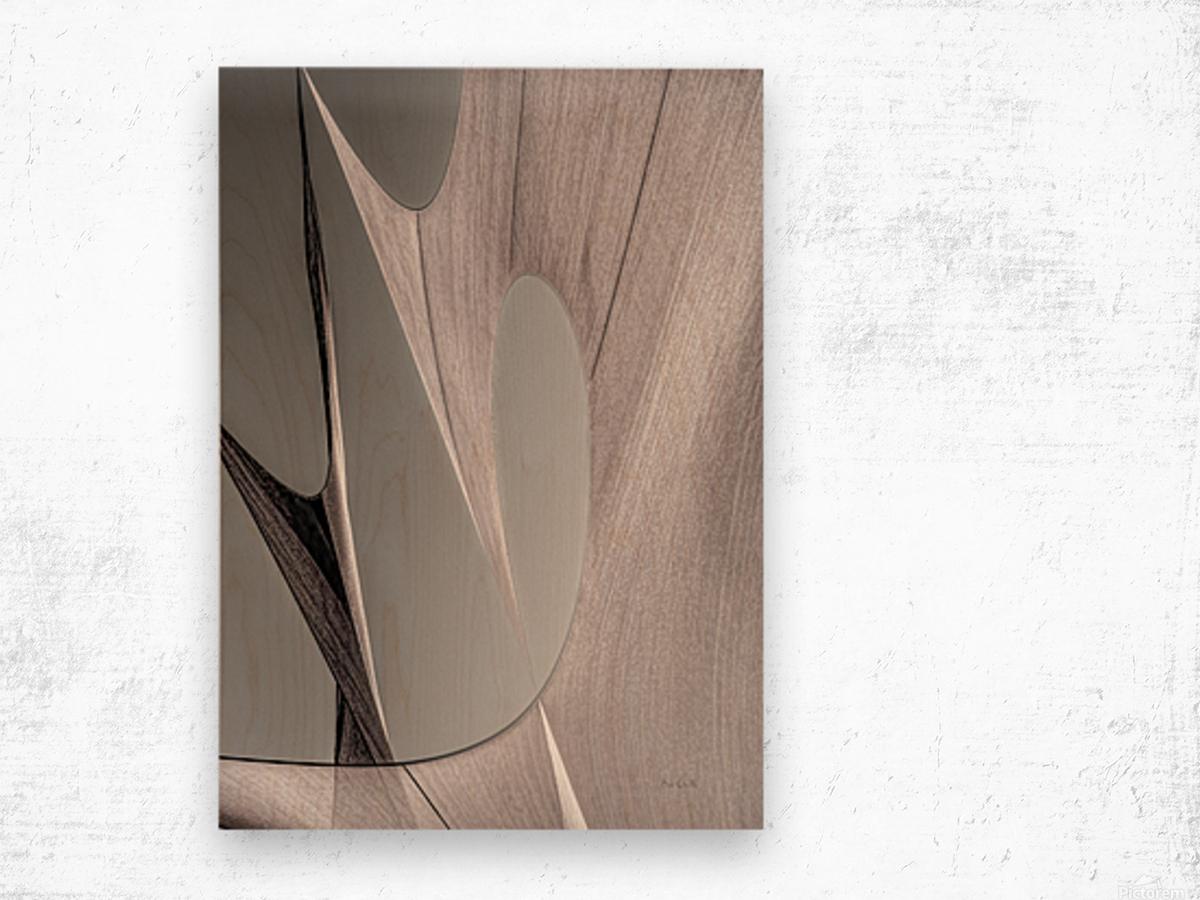 Abstract Sailcloth 20 Wood print