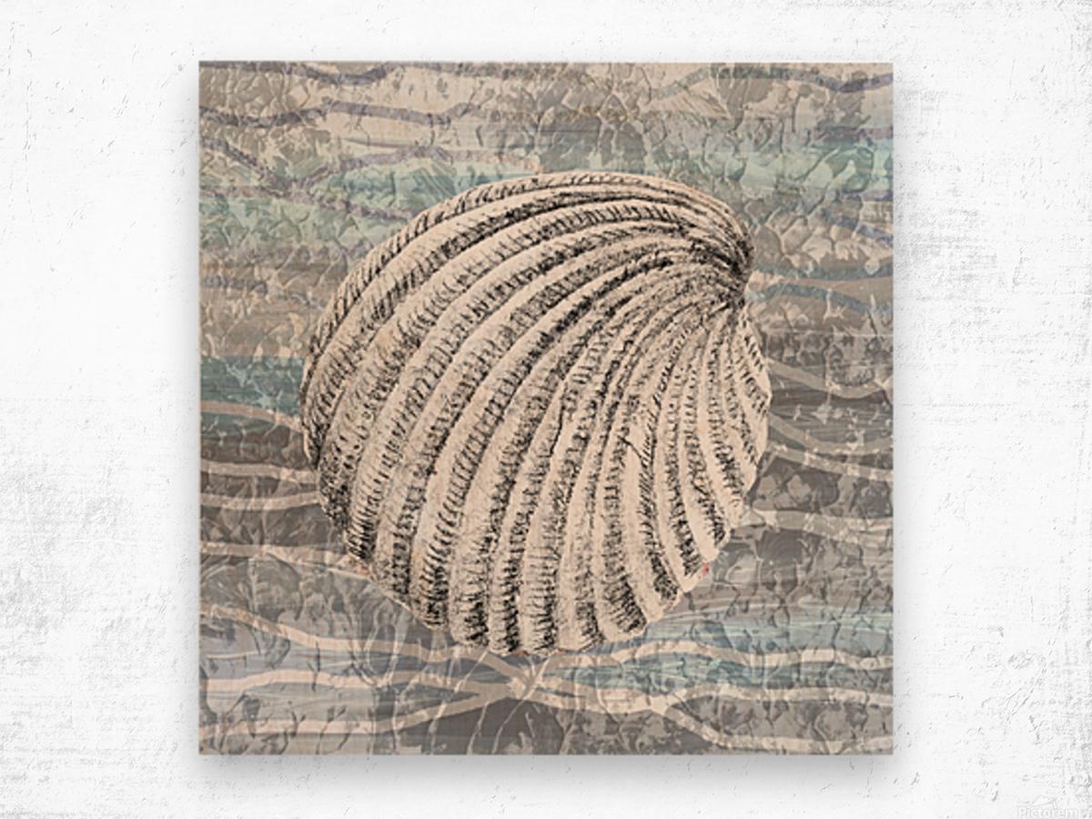 Silver Gray Seashell On Ocean Shore Waves And Rocks II Wood print