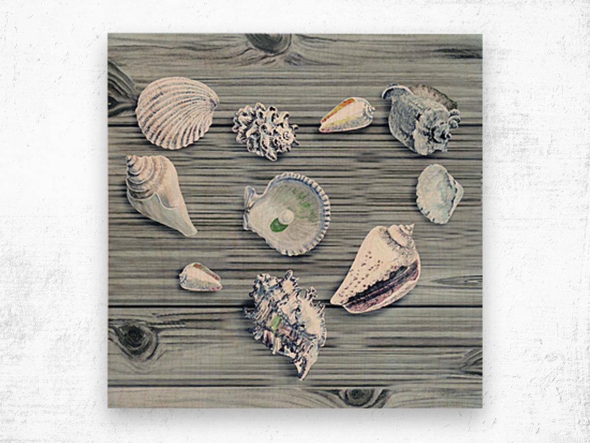 Silver Gray Seashells Heart On Ocean Shore Wooden Deck Beach House Art  Wood print