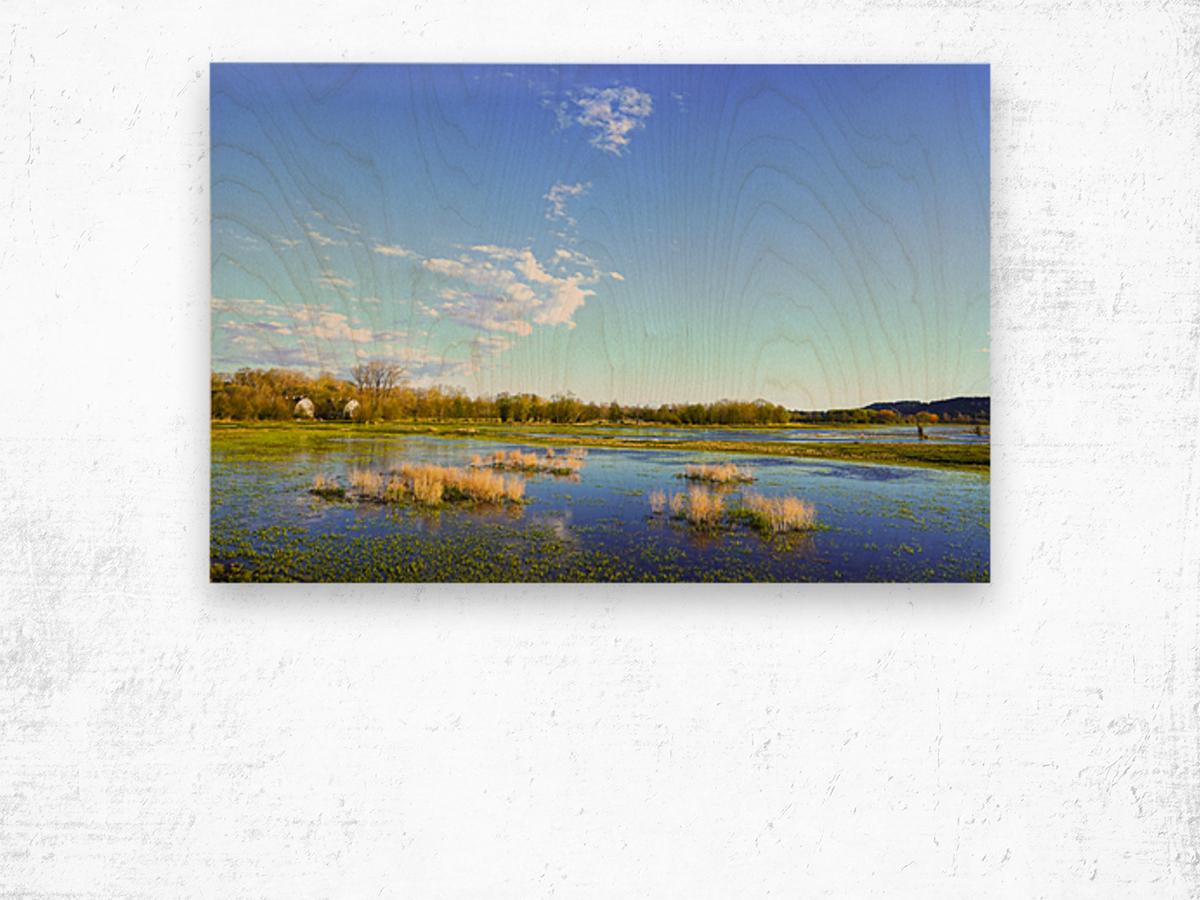 Beautiful Day at the Estuary 2 Wood print