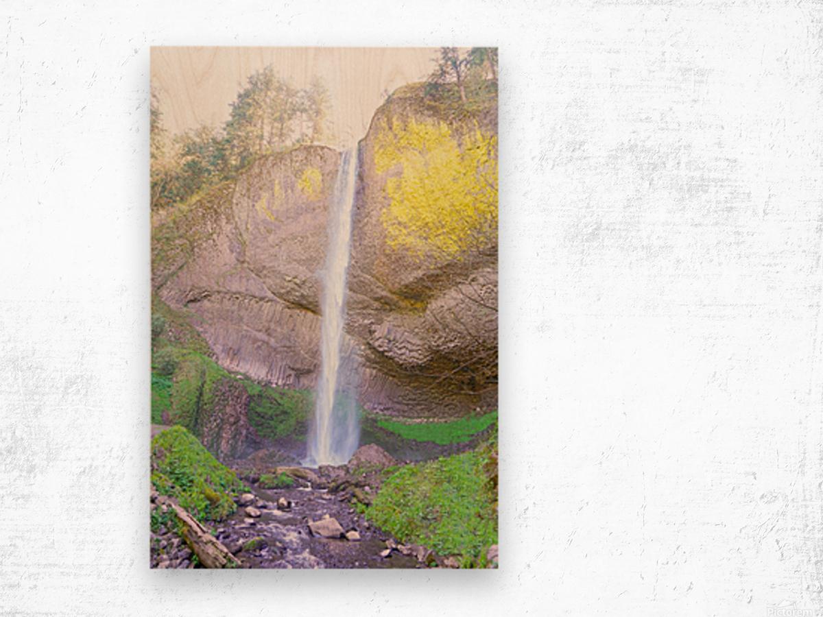 Majestic Falls in the Gorge   Columbia River Oregon Wood print