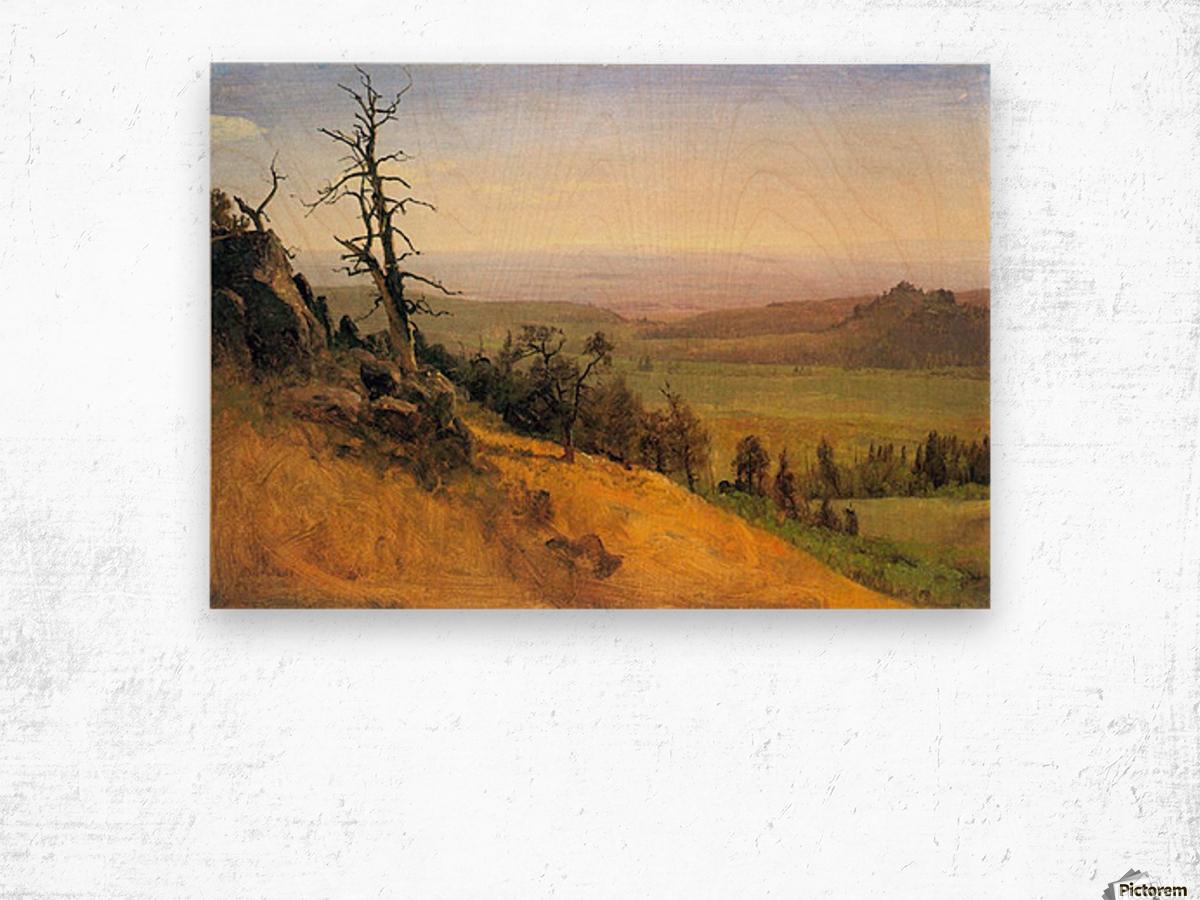 Wasatch Mountains Nebraska by Bierstadt Wood print