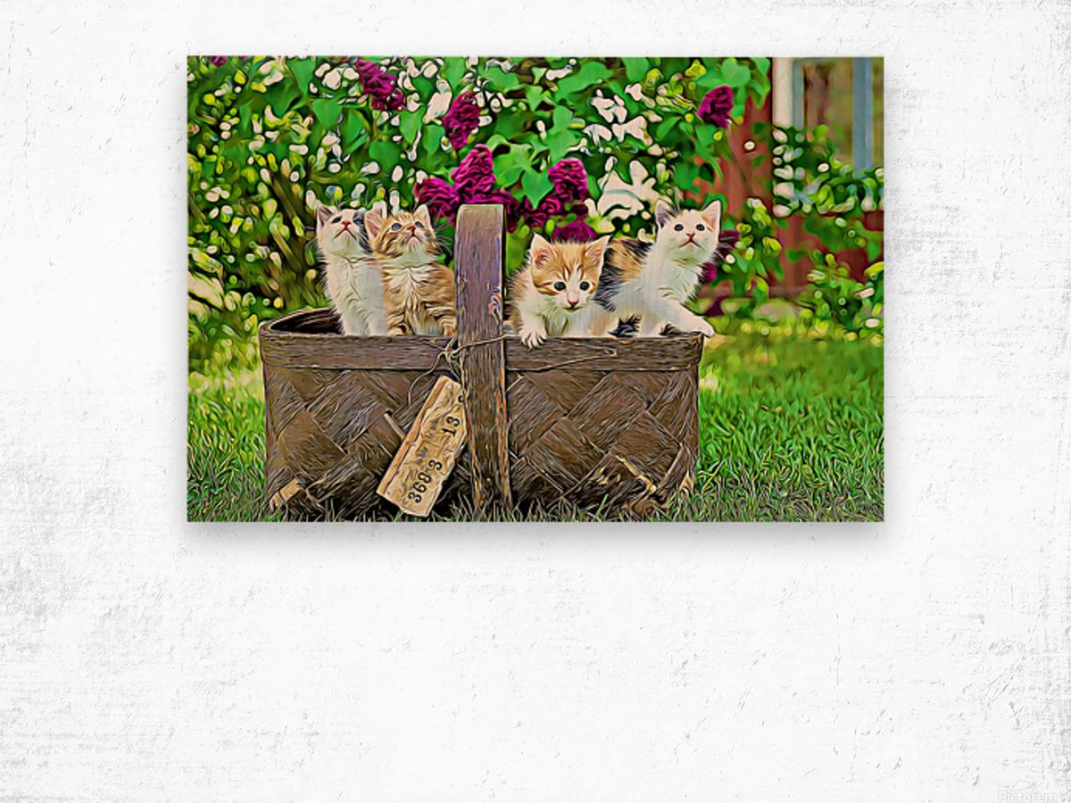 Basket of Kittens Wood print
