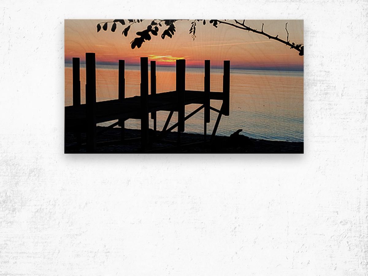 Lake Erie Doc Wood print