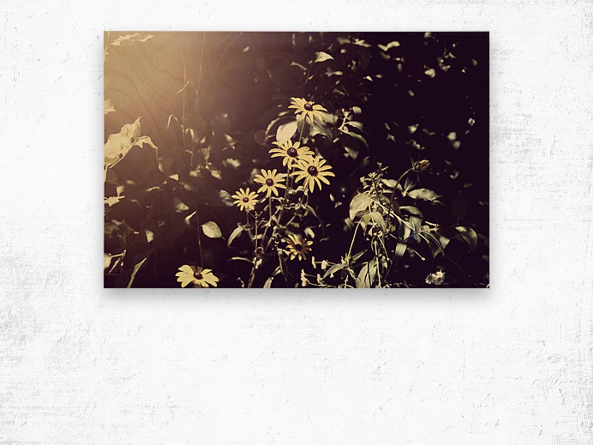 Shine On Me Wood print