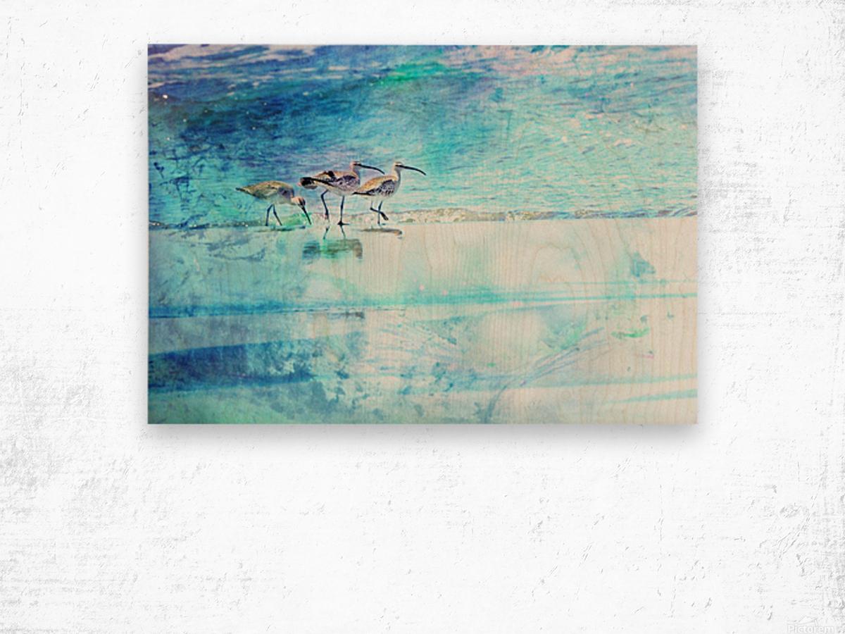 Three Whimbrels Wood print